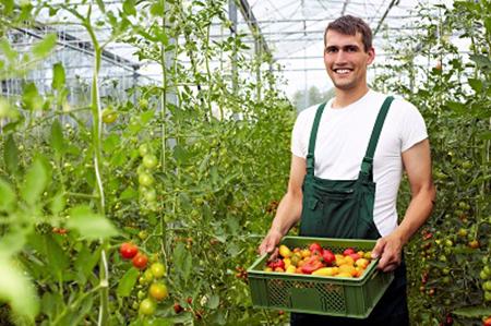 Gartneri og landbrug